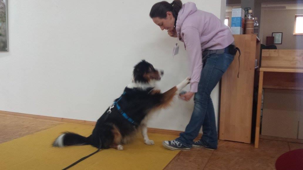 trickdogging_060216_7